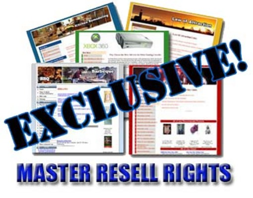 Product picture 2009 - 10 Niche sites + Master Resale Rights